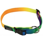 "Rainbow Dog Collar 3/4"" Large - 38-64cm (15-25"")"
