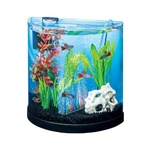 Tetra ColourFusion Aquarium Starter Kit with LED lights 11 Litres