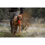 Ruffwear The Beacon Dog Safety Light