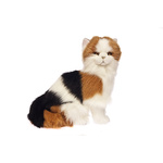 Plush Pets - Alfio the Calico Cat 34cm