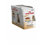 Royal Canin Cat Intense Beauty in Jelly 85g 12 Pack