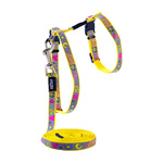 Rogz Cat Harness & Lead Set - Reflecto Cat Dayglow Yellow Small
