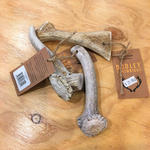 Dudley Cartwright Naturally Shed Whole Antler - Medium