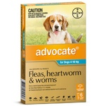 Advocate for Dogs 4-10kg - Teal 6 Pack