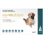 Revolution Dog Teal 20-40kg 3 Pack