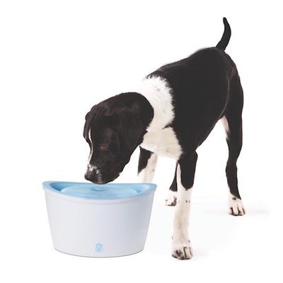 Dogit Fresh 'n' Clear Dog Drinking Fountain - 6 Litres
