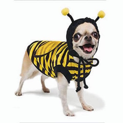 Dog Costume - Bumble Bee Size 5